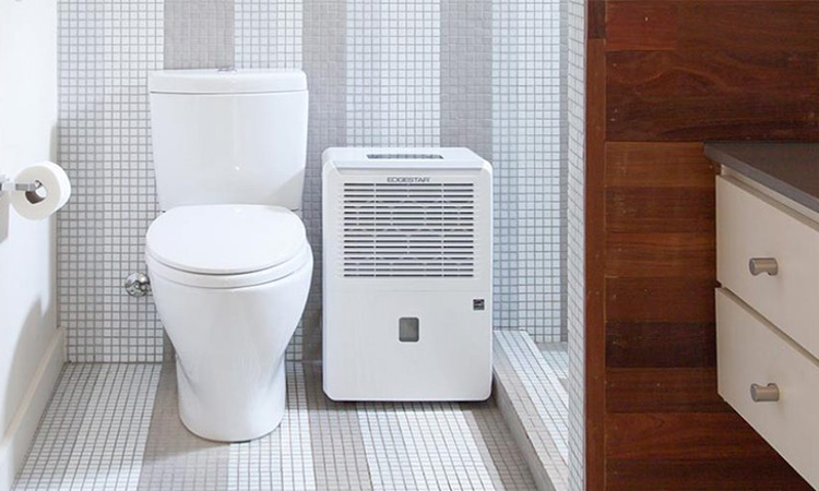 Bathroom Dehumidifiers