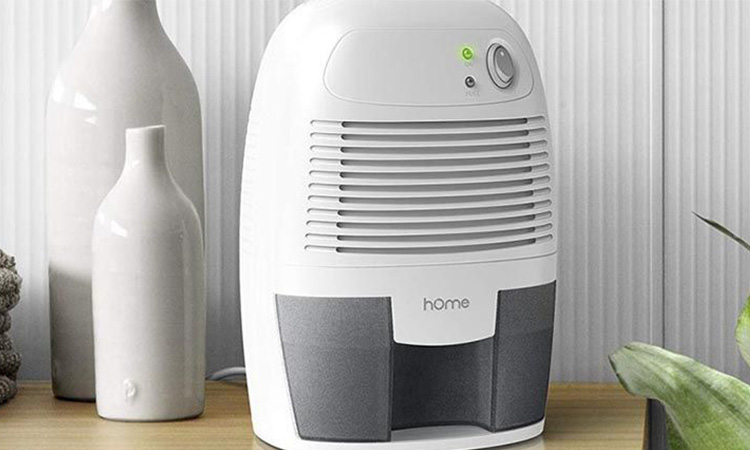Best Small Dehumidifier in 2020 | Keep Your Room Fresh and Clean!