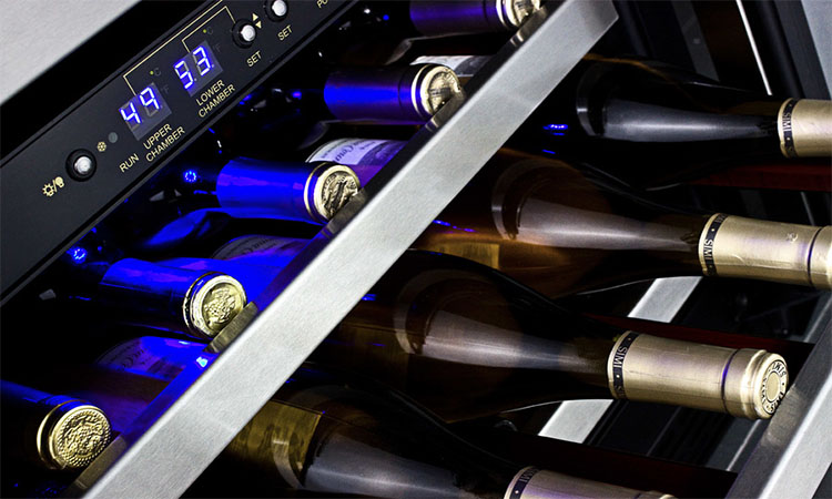Best Wine Coolers in 2020 | Maintain Good Temperature