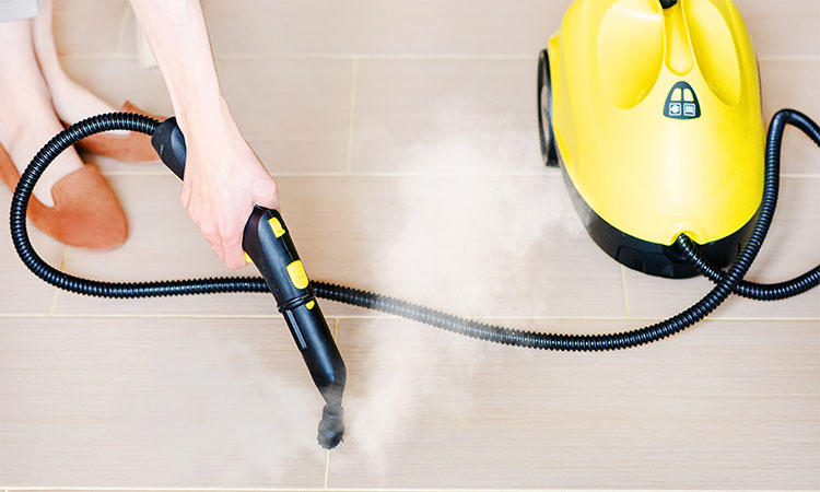 Best Steam Vacuums in 2020 | Guarantee Clean and Sanitize