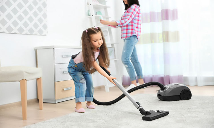 Best Electrolux Vacuums in 2020 | Spot Out Dust & Dirt