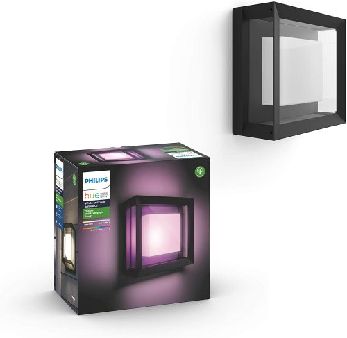 Philips Hue Econic Outdoor White & Color Wall & Ceiling Light Fixture