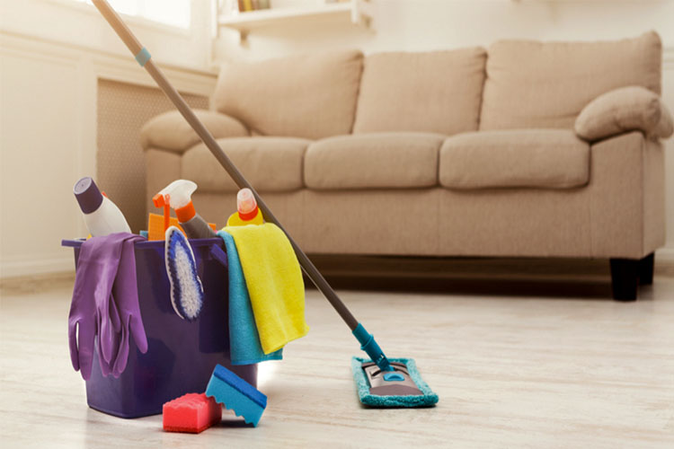 Best Microfiber Mops in 2021 | Smart Cleaning Trick