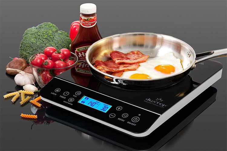 Best Portable Induction Cooktops in 2021 | Magnetic & Safe