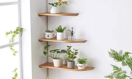 Wall Mount Corner Shelves