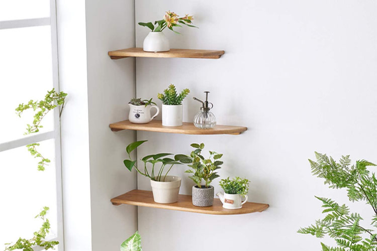 Best Wall Mount Corner Shelves in 2021 | Enhance The Decoration